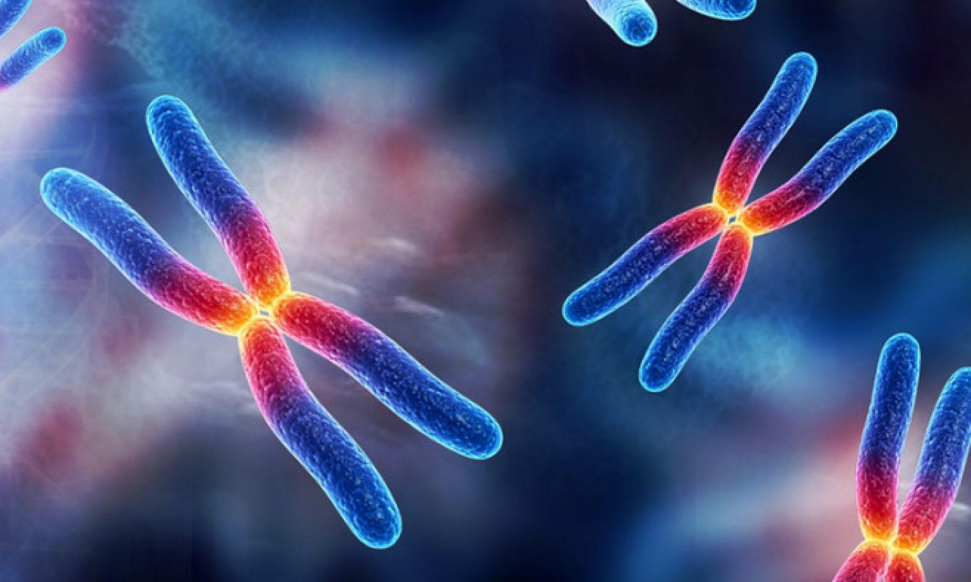 structuralgenetics.com